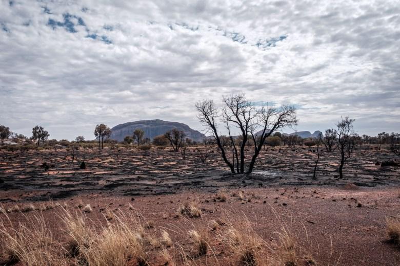 Australia Uluru 47