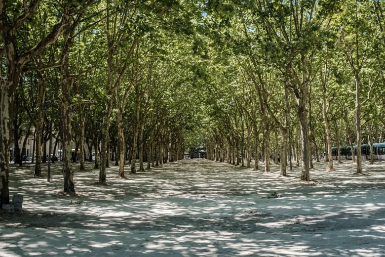 France Bordeaux 21
