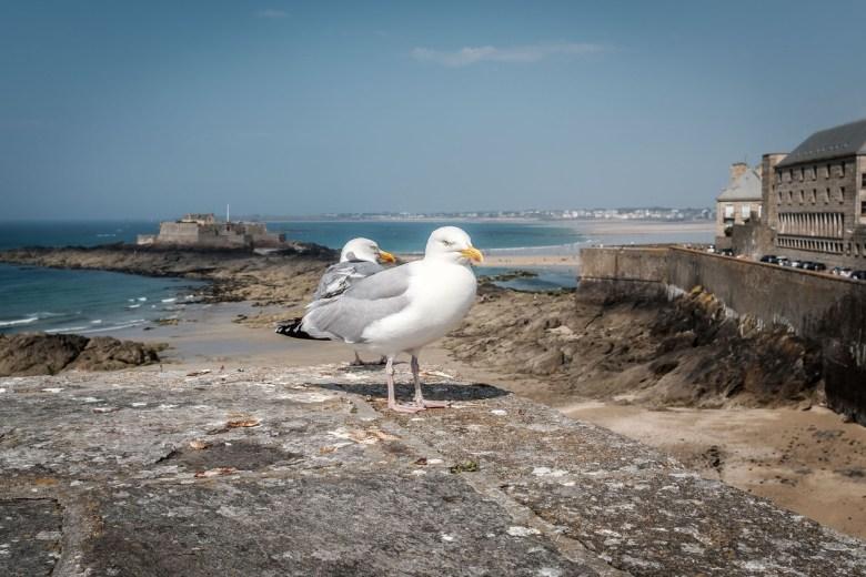 France Saint Malo 26