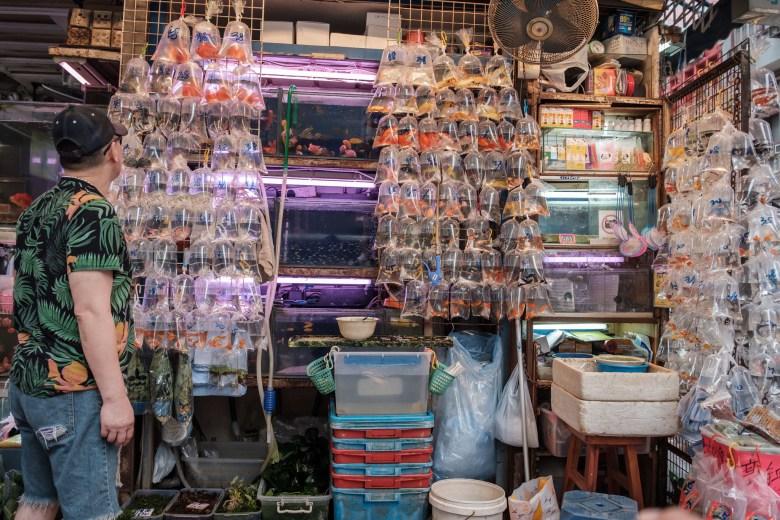 Hong Kong Kowloon 131