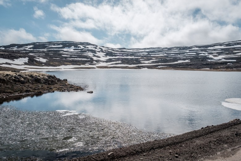 Iceland Westfjords 16