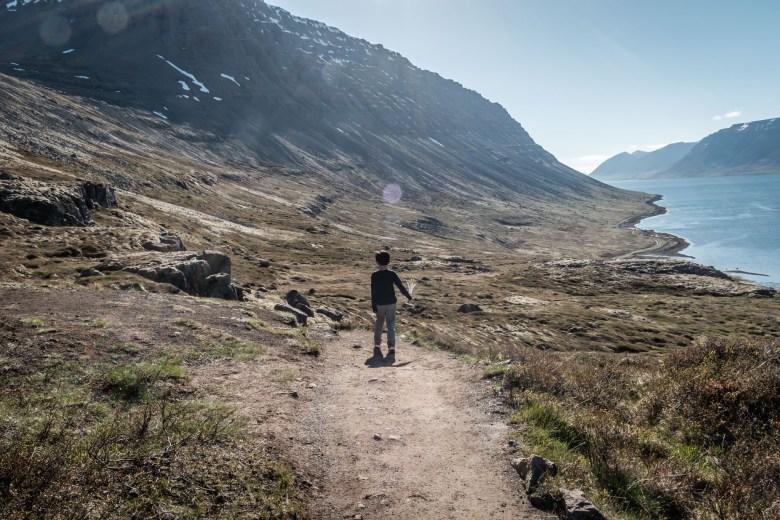 Iceland Westfjords 42