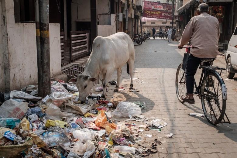 India Varanasi 017