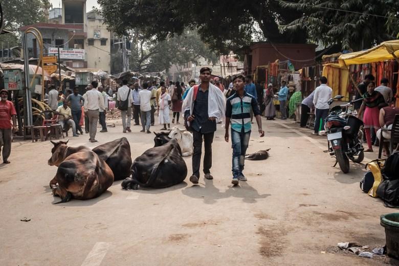 India Varanasi 019