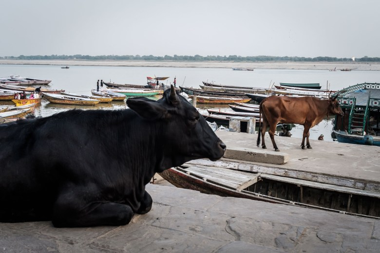 India Varanasi 065
