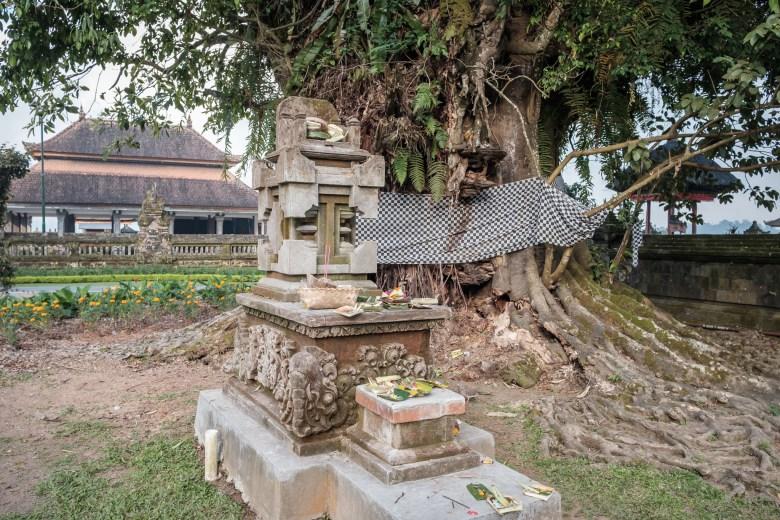 Indonesia Munduk 006