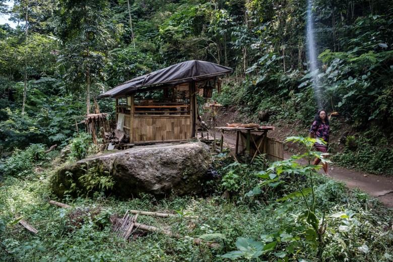 Indonesia Munduk 041