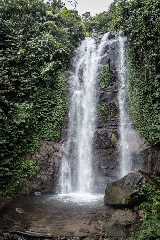 Indonesia Munduk 048