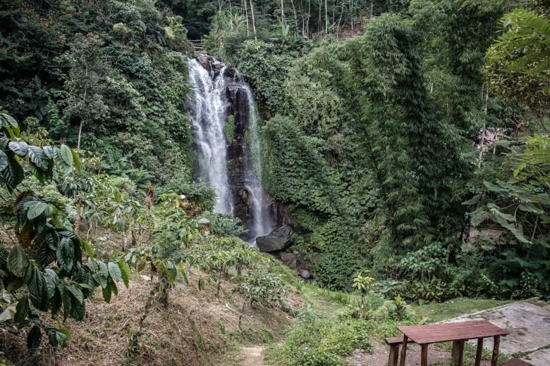 Indonesia Munduk 056
