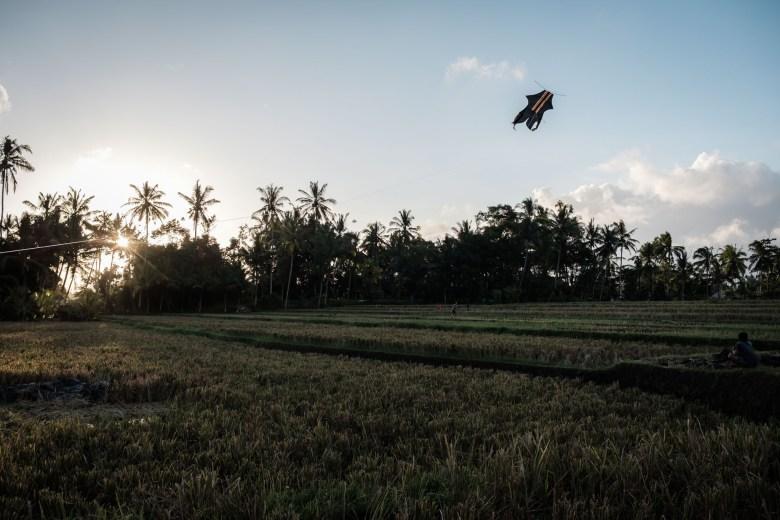 Indonesia Ubud 011