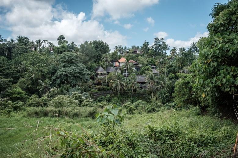 Indonesia Ubud 031
