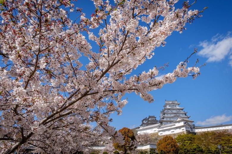 Japan Himeji 09