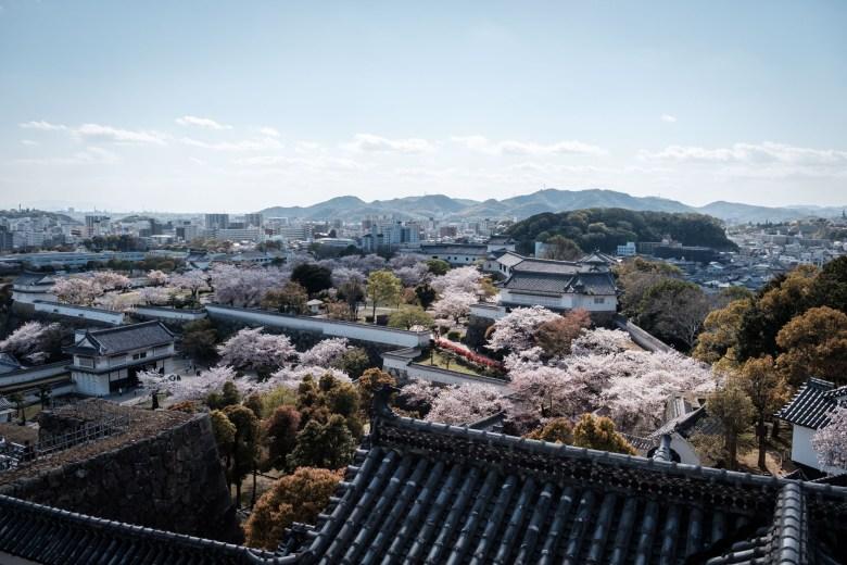 Japan Himeji 23