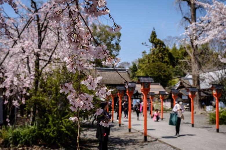 Japan Kyoto 033