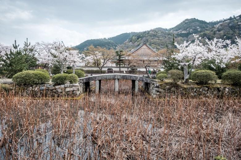 Japan Kyoto 095
