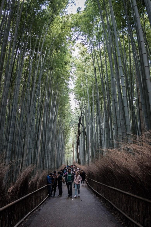 Japan Kyoto 108