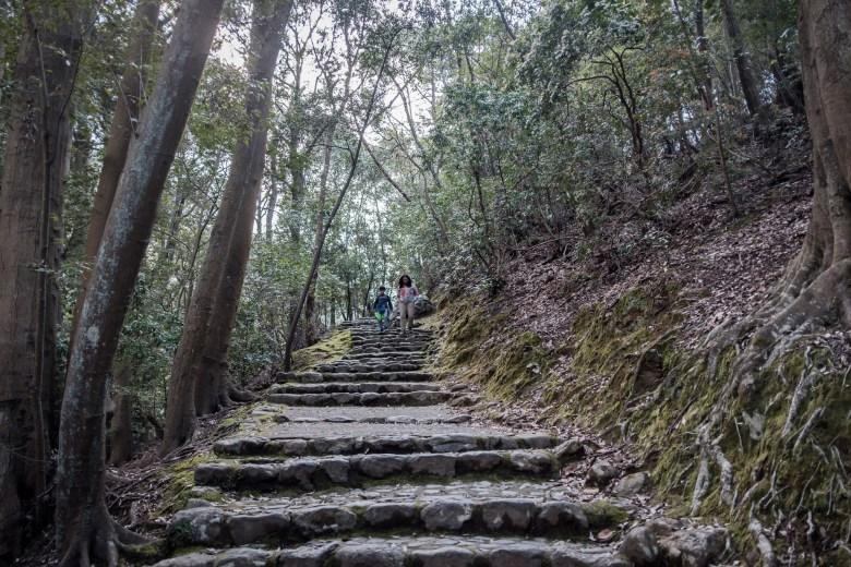 Japan Kyoto 115