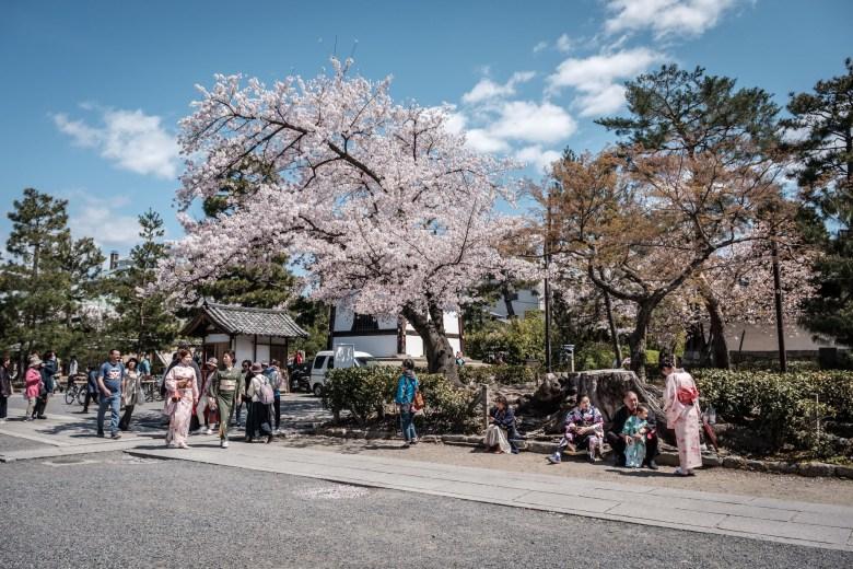 Japan Kyoto 127