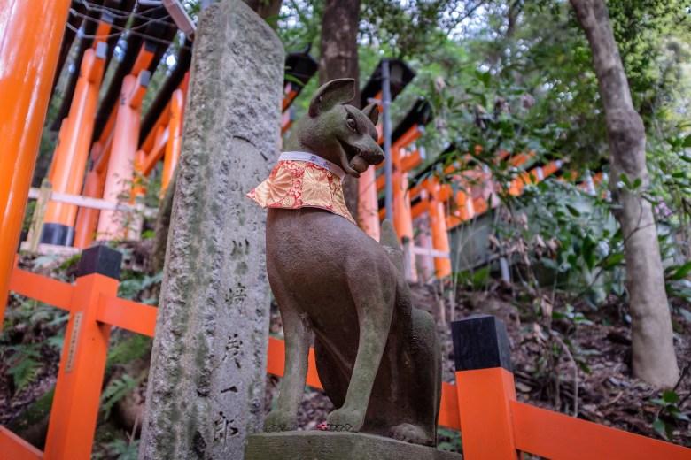 Japan Kyoto 201
