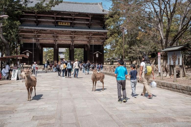Japan Nara 07