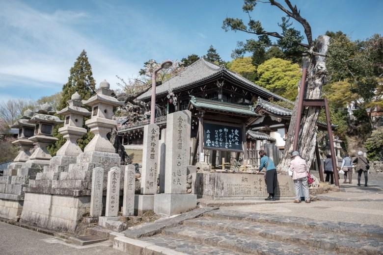 Japan Nara 26