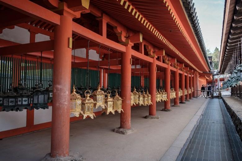 Japan Nara 36