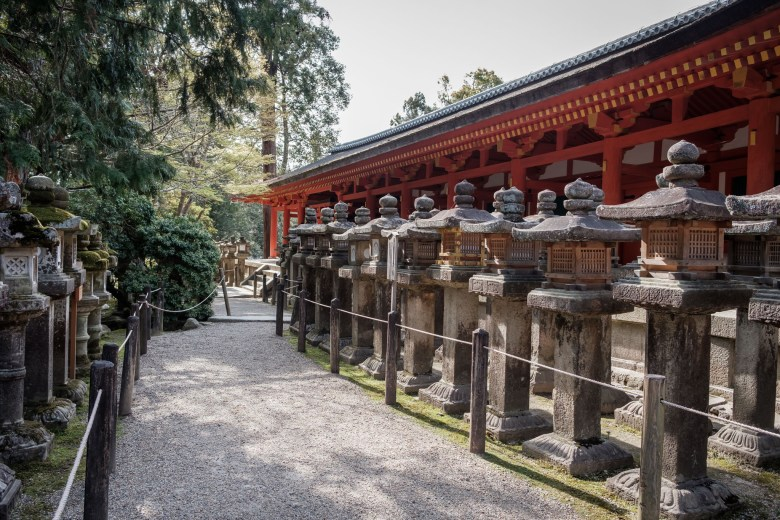 Japan Nara 37