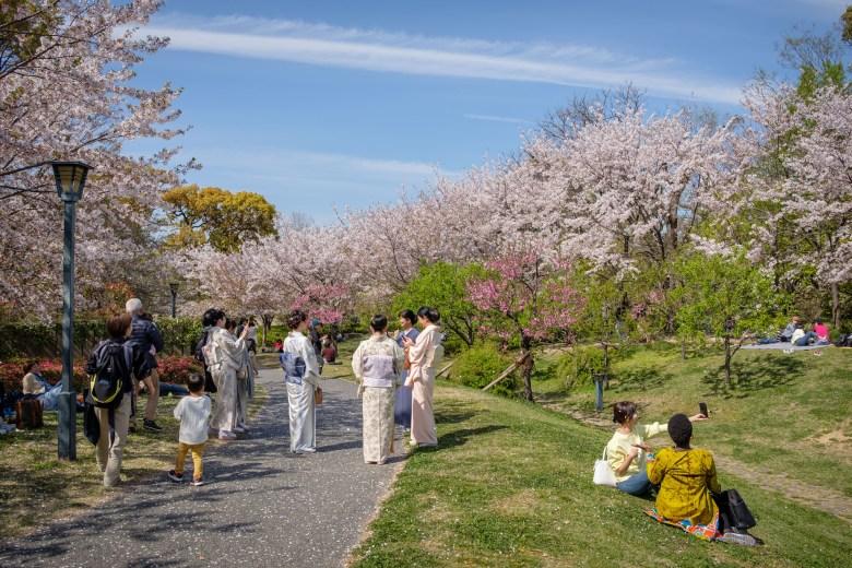 Japan Osaka 065