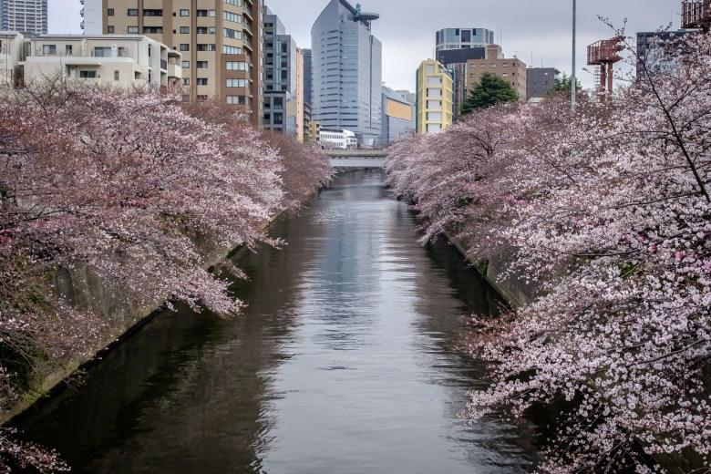 Japan Tokyo 006