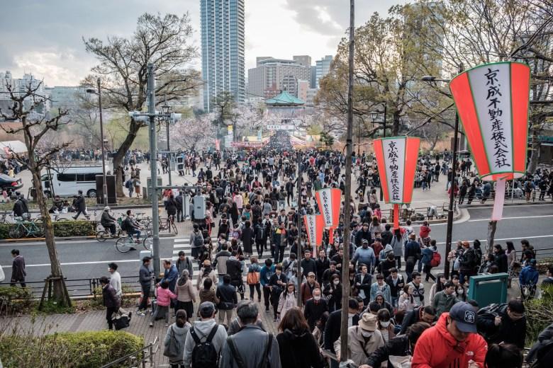 Japan Tokyo 042