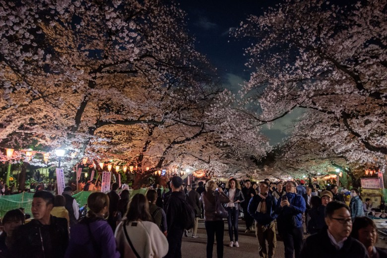 Japan Tokyo 060