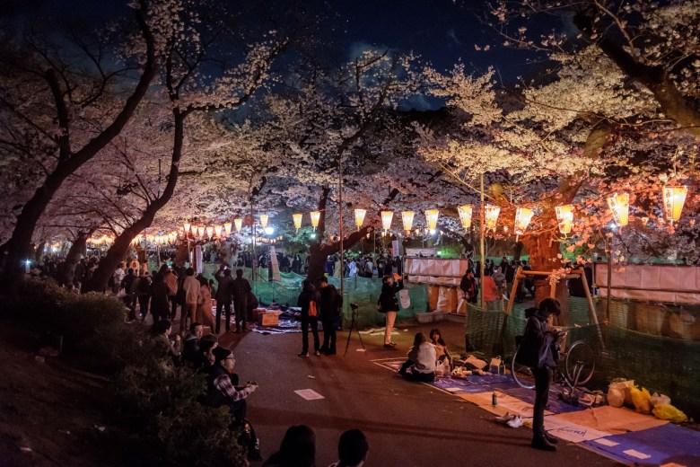 Japan Tokyo 062