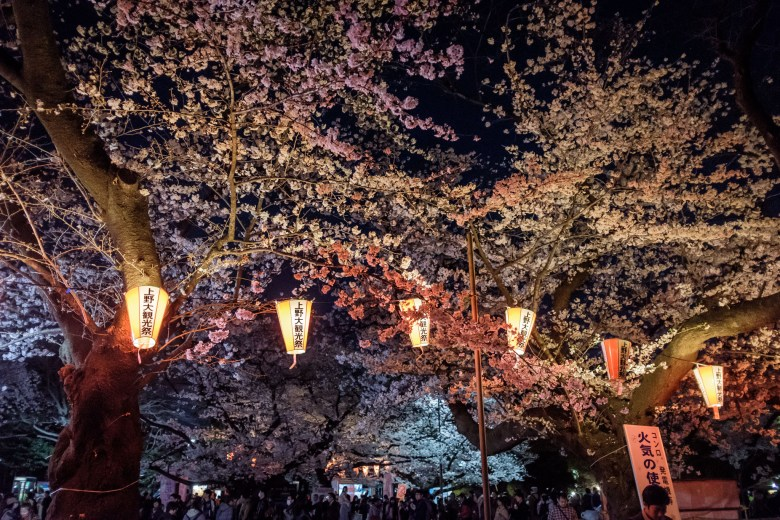 Japan Tokyo 063