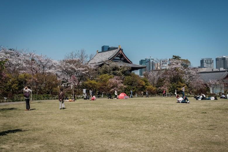 Japan Tokyo 205