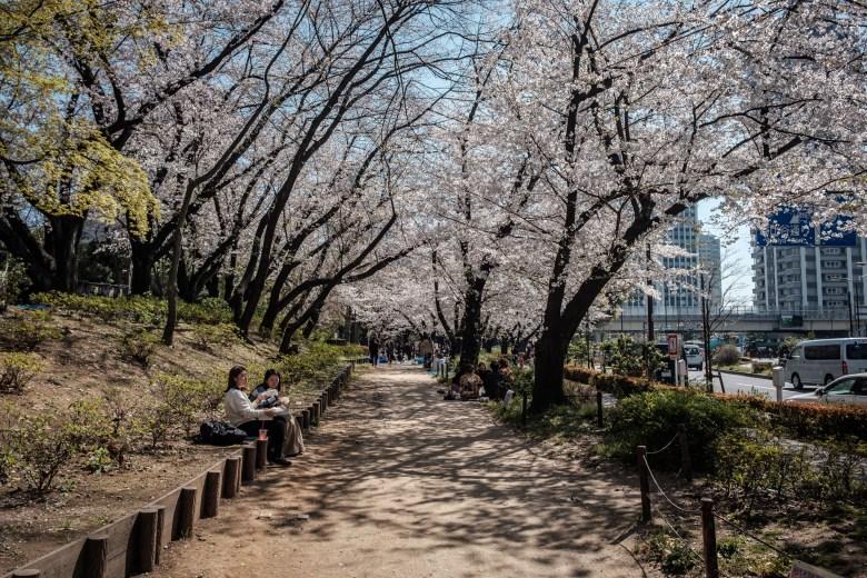 Japan Tokyo 207
