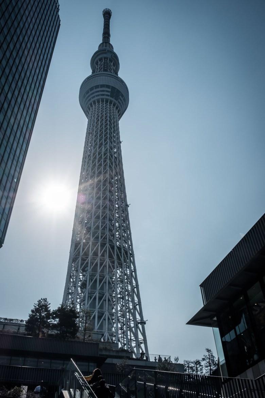 Japan Tokyo 309