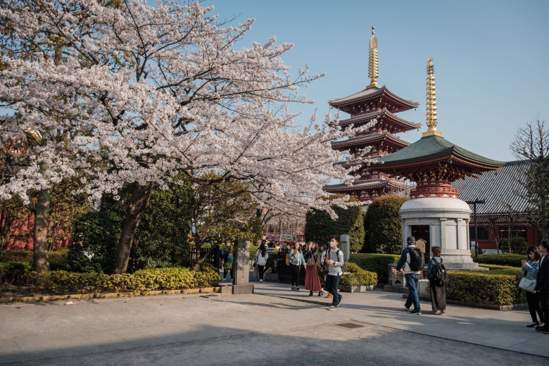 Japan Tokyo 349
