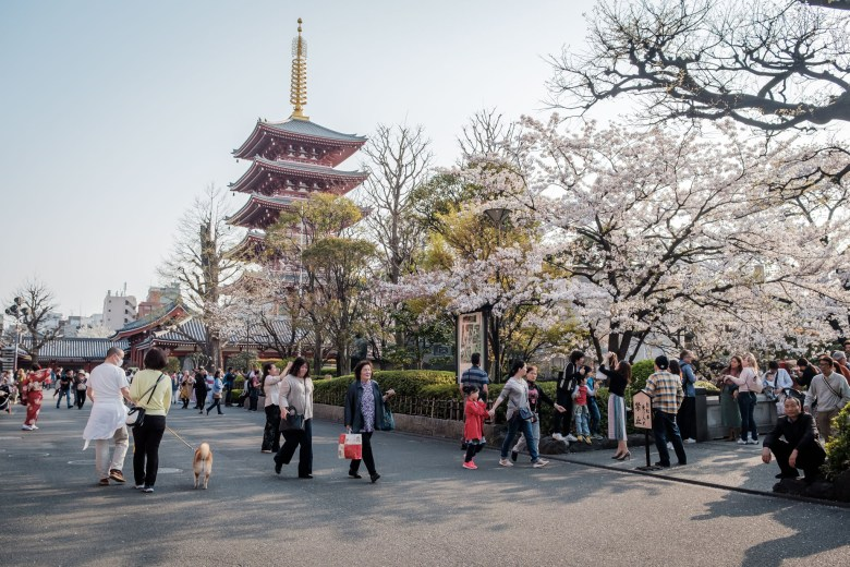 Japan Tokyo 351