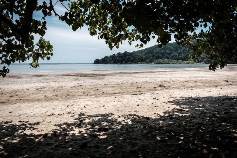 Malaysia Bako National Park 014