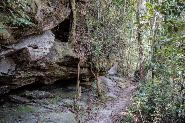 Malaysia Bako National Park 020