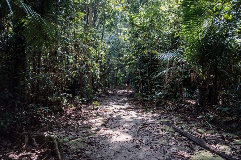 Malaysia Bako National Park 098