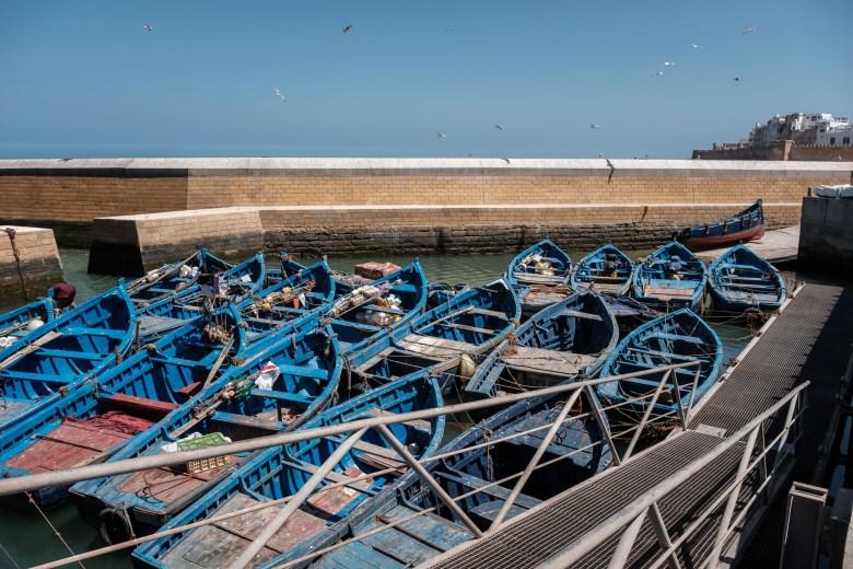 Morocco Essaouira 11