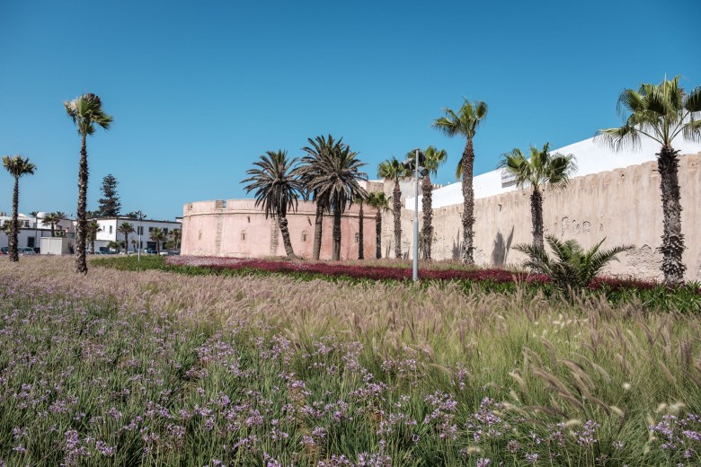 Morocco Essaouira 69