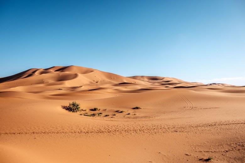 Morocco Merzouga 047
