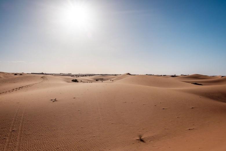 Morocco Merzouga 049