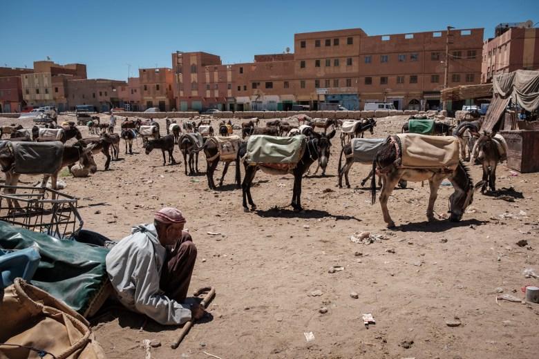 Morocco Rissani 06