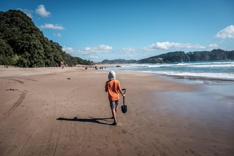 New Zealand Coromandel 04