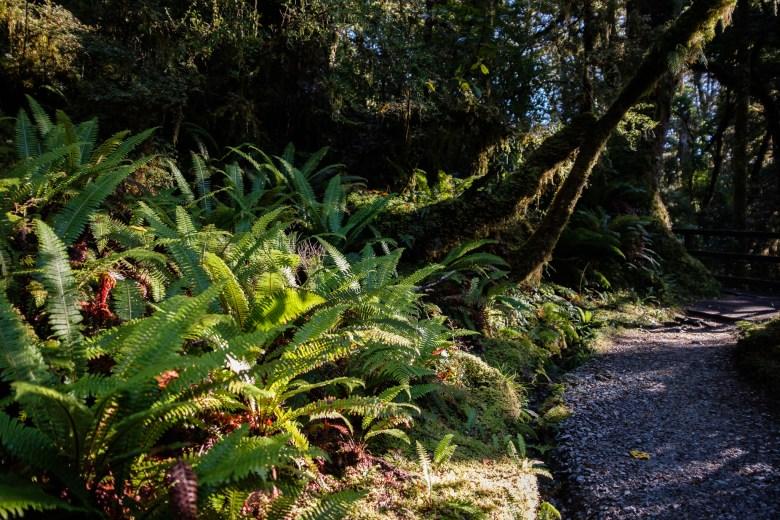 New Zealand Queenstown 024