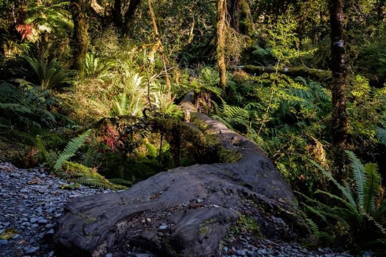 New Zealand Queenstown 025