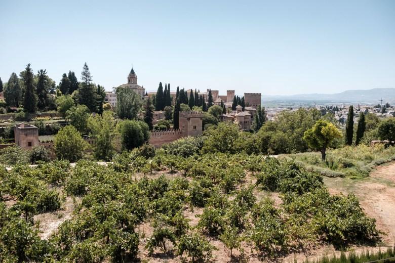 Spain Granada 056